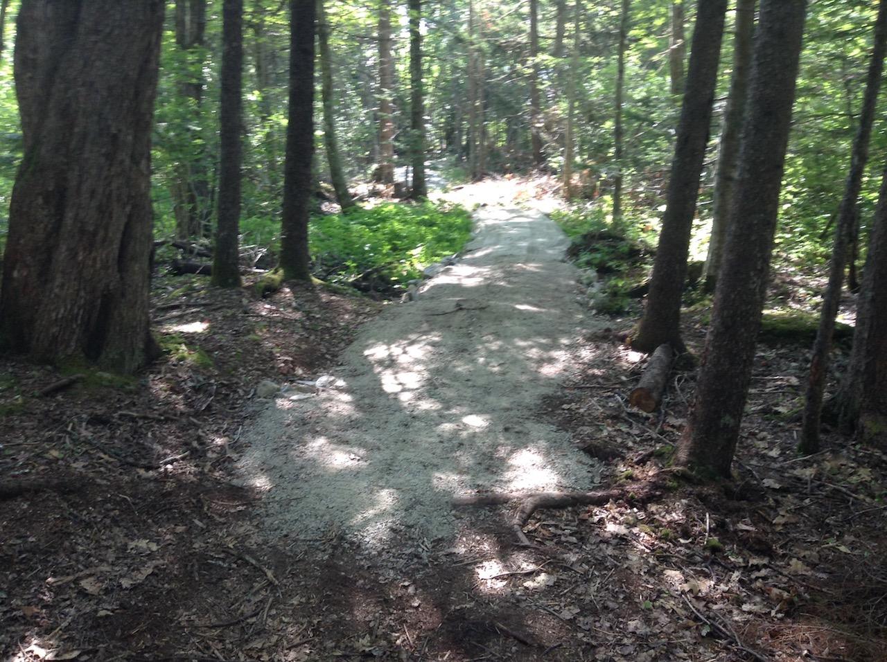 2016-trail-bog-filled